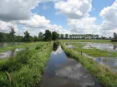 Vallei van de Wantebeek met Vorte Bossen, Slangenbos en Schoonbergbos