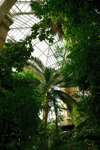 Dierentuin - Zalencomplex: wintertuin