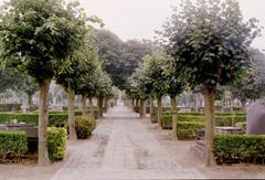 Maldegem Katsweg zonder nummer begraafplaats (https://id.erfgoed.net/afbeeldingen/111450)