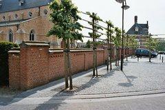 Kerkhof Sint-Pieters-Banden met roepsteen