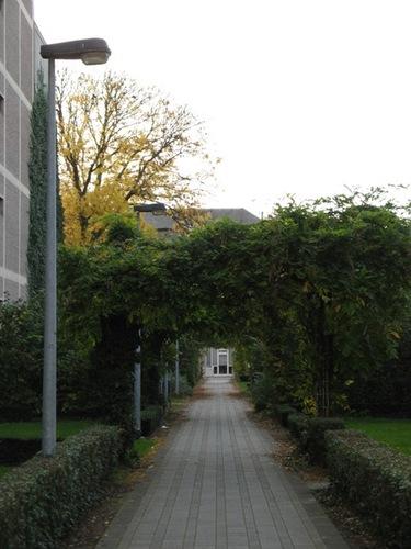 Leuven Vital Decosterstraat 104