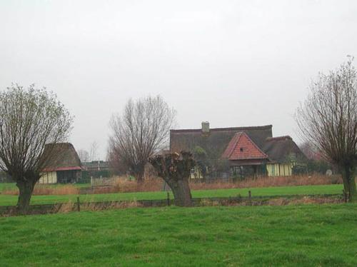 Sint-Corynstraat 8