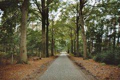 Antwerpse Heirweg