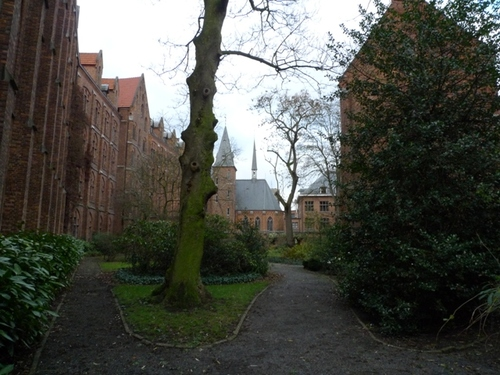 Leuven Minderbroedersstraat 15 tuin