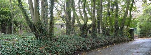 Hooglede Gitsbergstraat 113BC-115