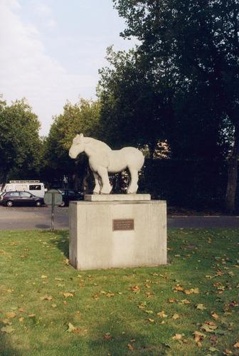 Beeld van een Brabants trekpaard