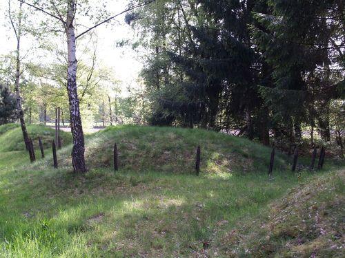 Acht kunstmatig opgehoogde grafheuvels uit de ijzertijd