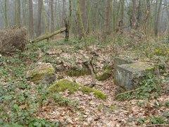 Restanten Duitse bunker Boombos 12