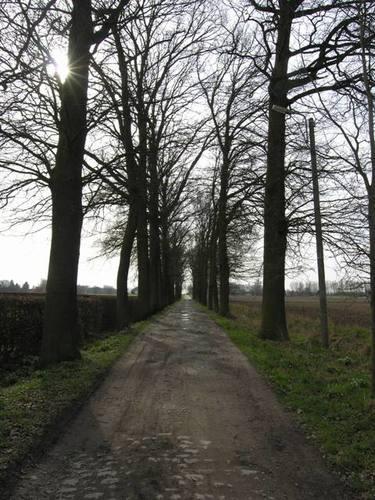 Sint-Ulriks-Kapelle_Brugveldstraat_dreef_zicht richting E40