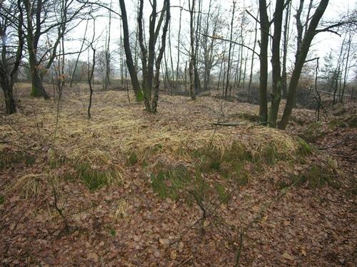 Maasmechelen Steenweg naar As zonder nummer Terrein met loopgraven en bunkers