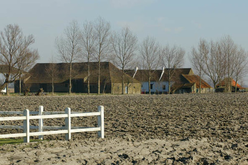 Knokke-Heist Hazegrasstraat 141