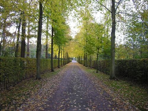 Sint-Genesius-Rode Monniksweg 24