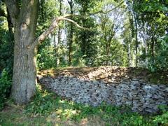 Wijngaardberg en het landbouwgebied tot aan de Parhof
