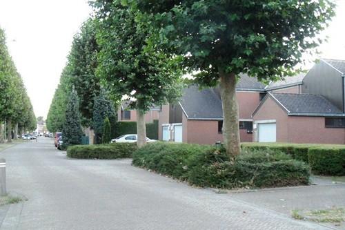 Mechelen Bethaniënpolder Frans Broersstraat