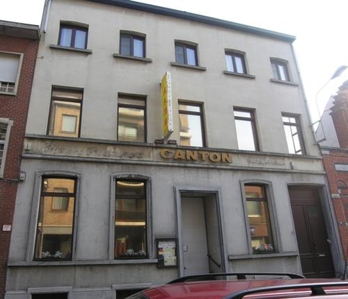 Boom Leopoldstraatraat 16