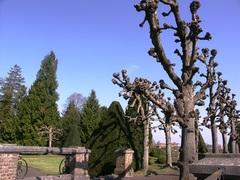 Park van het kasteel van Bommershoven