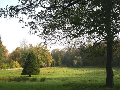 Park bij het Hof te Zittert