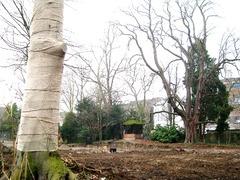 Restant van de tuin van het Temmershof