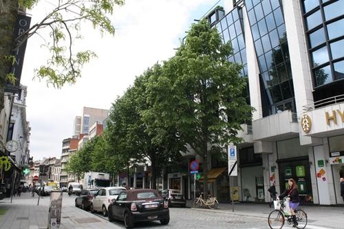 Antwerpen Appelmansstraat 2