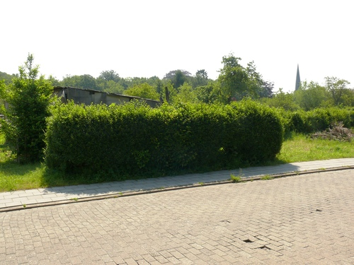 Bornem Hingene Schuttershofweg Afsluitingshagen (12)
