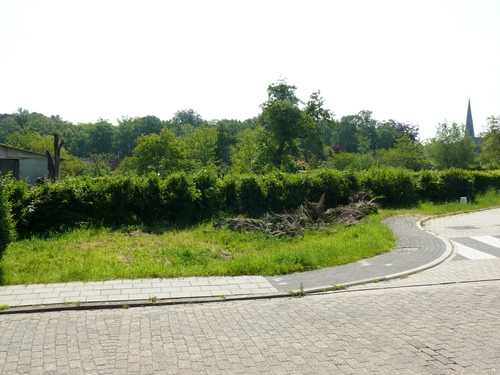 Bornem Hingene Schuttershofweg Afsluitingshagen (14)