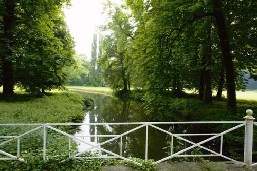 Zicht op de meanderende waterloop en Italiaanse populieren in het kasteelpark van Wilder