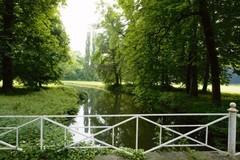 Zicht op de meanderende waterloop en Italiaanse populieren in het kasteelpark van Wilder (https://id.erfgoed.net/afbeeldingen/178055)