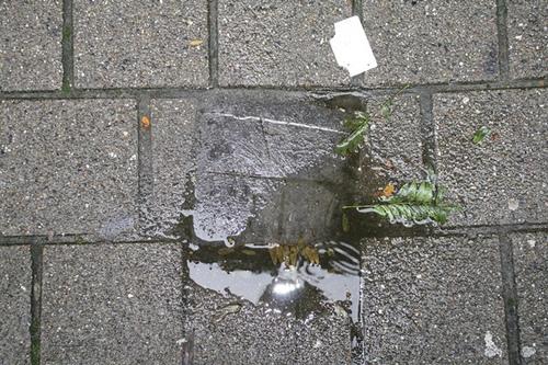 Antwerpen Van Geertstraat 26 grenssteen