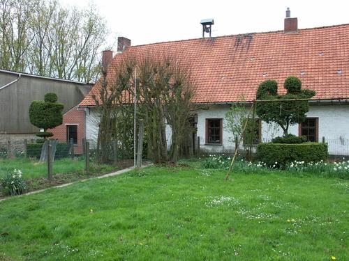 Zwalm Machelgemstraat 1 Boerentopiary van twee geschoren buxussen