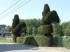 Afsluitingshaag met topiary van in haan en kip geschoren taxus