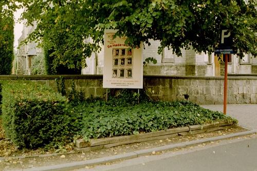 Aalst Hofstade Hofstade-Dorp Vredeslinde (4)