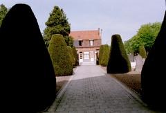 Geschoren taxussen op kerkhof Maria-Aalter