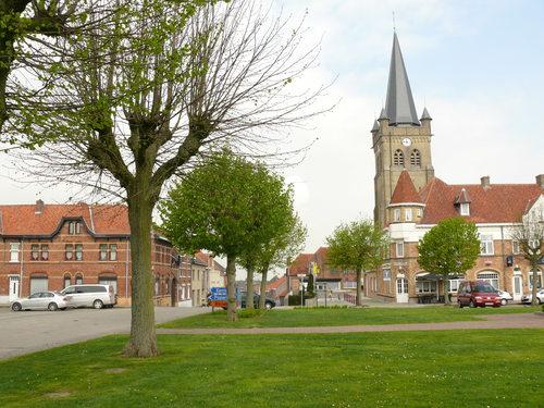 Heuvelland (Wijtschate) Sint-Medardusplein Gekandelaarde pleinbeplanting van linde (4)