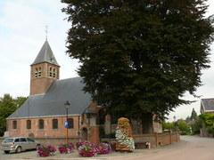 Kluisbergen Zulzeke Zulzekestraat Vredesboom (2) (https://id.erfgoed.net/afbeeldingen/188627)