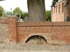 Kluisbergen Zulzeke Zulzekestraat Vredesboom (4) (https://id.erfgoed.net/afbeeldingen/188629)