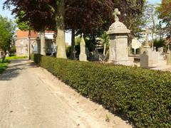 Geschoren hulsthaag als afsluiting van kerkhof Leisele