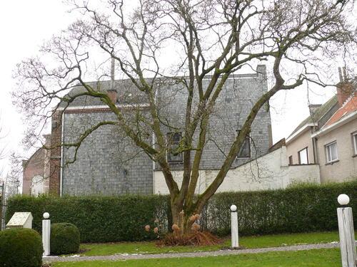 Horebeke Sint-Maria-Horebeke Dorpsstraat 39 Magnolia