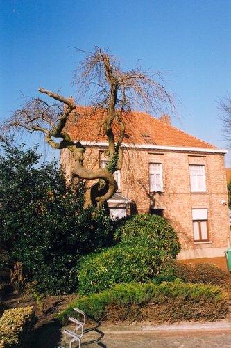 Maldegem Deken de Fonteynestraat Treuressen (2)