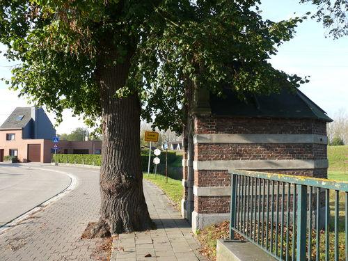 Mechelen Leest Pastoor De Heuckstraat Kapellinde (7)