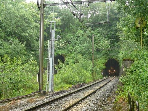 Sint-Martens-Voeren houtkant op talud langs spoorweg