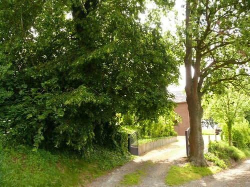 Sint-Martens-Voeren Knap 29 welkomstbomen