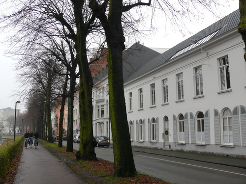 Gent Coupure Linden- en platanenrij (4)
