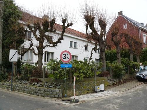 Herzele Steenhuize-Wijnhuize Korrestraat 16 Leilindenrij (2)