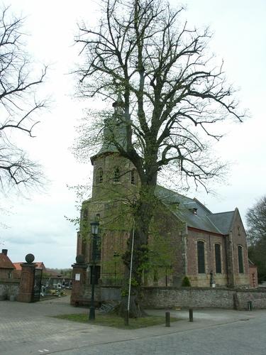 Zwalm Borstekouterstraat 59 Vier opgaande linden op het kerkplein
