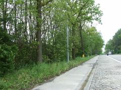 Houtkant op talud langs holle weg