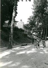 Leuven Sint-Donatuspark (https://id.erfgoed.net/afbeeldingen/197634)