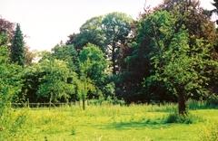 Parkje van Kasteel De Toren