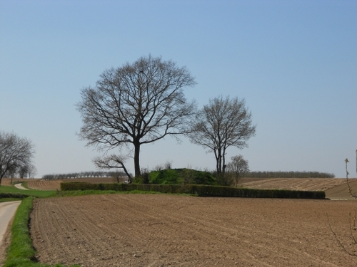Tumulus van Vechmaal