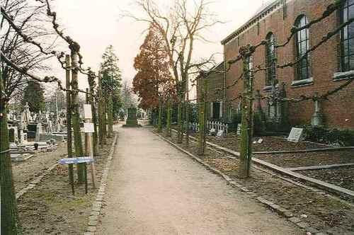 Sint-Truiden Stedelijke Begraafplaats toegangslaan 01