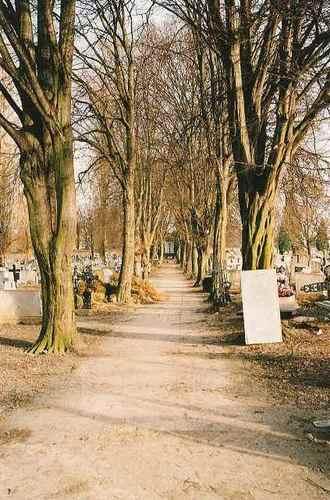 Sint-Truiden Stedelijke Begraafplaats dreef 01